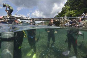 フィリピンで初めてのダイビングは緊張しますね。