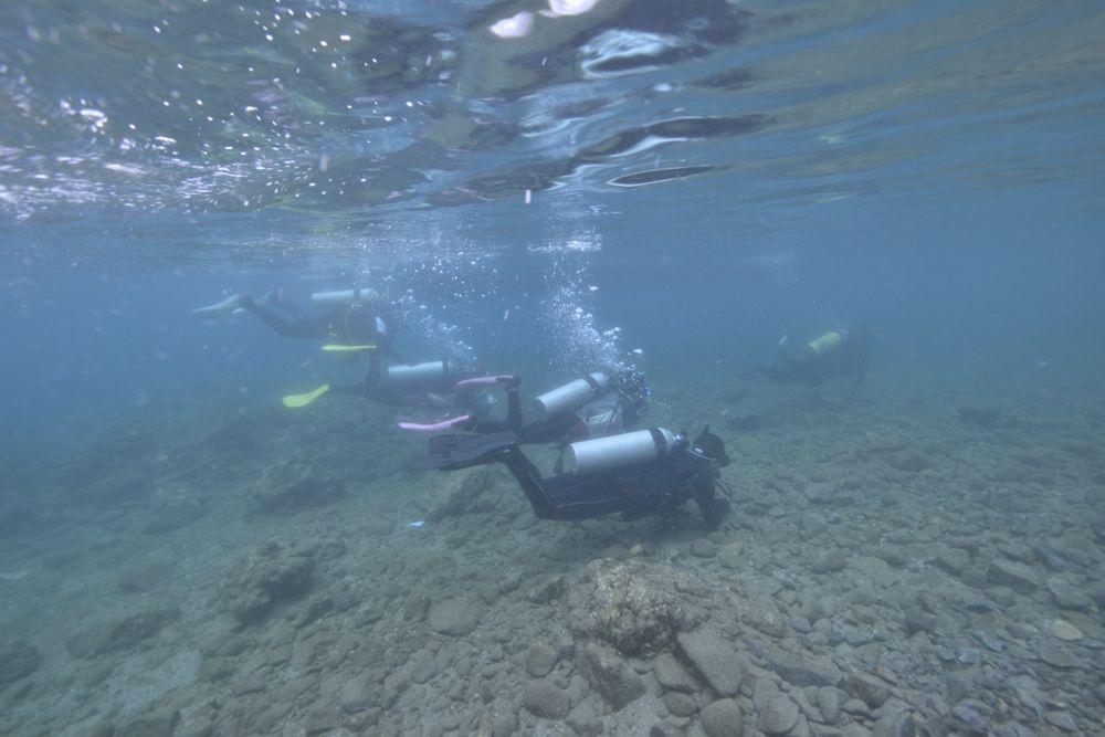 最初は浅いところからですが初めてのダイビングはやはり緊張しますね。